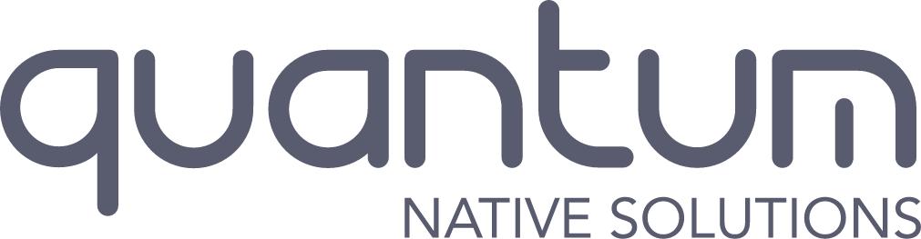 Quantum native solutions